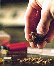 ¿Usos terapeúticos de los cannabinoides?
